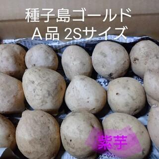 種子島ゴールド2S 2キロ(野菜)
