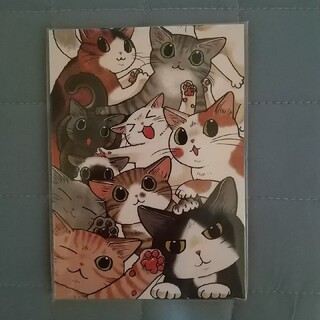フェリシモ(FELISSIMO)のフェリシモ ポストカード(写真/ポストカード)