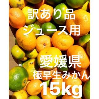 訳あり品 愛媛県 極早生みかん 柑橘 ジュース用 15kg(フルーツ)