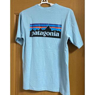 patagonia - Patagonia  パタゴニア Tシャツ 水色