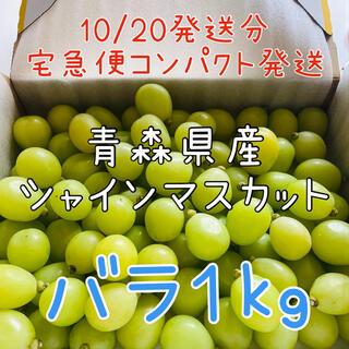【農家直送】朝採りシャインマスカット バラ1キロ