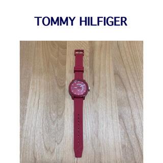 トミーヒルフィガー(TOMMY HILFIGER)のトミーヒルフィガー 腕時計 赤(腕時計(アナログ))