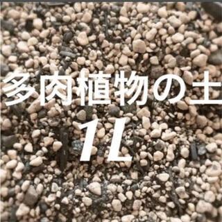 多肉植物 サボテンの土 培養土 約1リットル  即購入歓迎❣️(その他)