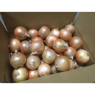 北海道産 タマネギ Mサイズ 10kg 農家直送