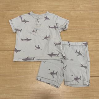 gelato pique - 【gelato pique】シャークモチーフ Tシャツ ハーフパンツ 80-90