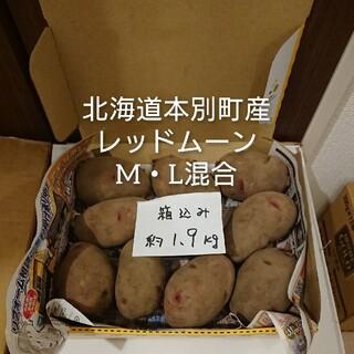 レッドムーン 新じゃがいも 中玉・大玉混合(野菜)