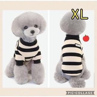 犬服XL セーター ニット ボーダー ベージュ 防寒 犬用品 冬服 可愛い