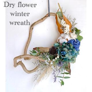 ドライフラワー 蒼い夜のクリスマス リース パンパスグラス コットン 秋色紫陽花(ドライフラワー)