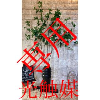 光触媒 人工観葉植物 ウォールグリーン 造花 アレンジ ドウダン花器付120