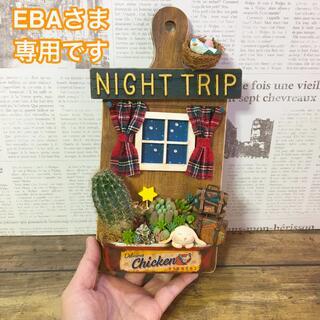 多肉植物の寄せ植え 壁掛けボード(NIGHT TRIP)(その他)