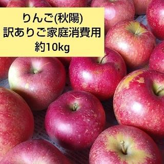 りんご(秋陽)訳ありご家庭消費用 約10kg