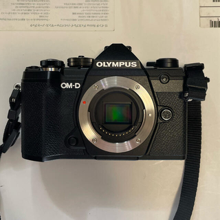 OLYMPUS - OLYMPUS OM-D E-M5 Mark III ボディ(黒)