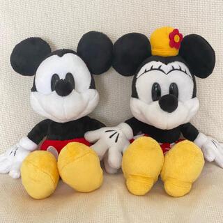Disney - ミッキー ミニー セット ぬいぐるみ