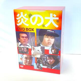 【美品】 炎の犬 DVD-BOX〈5枚組〉