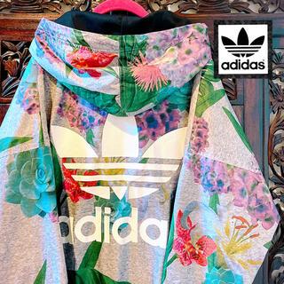 adidas - アディダス 海外限定 ナイロン パーカー ジャージ 花柄 アジサイ 紫陽花