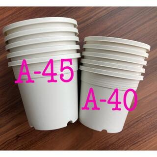 プラ鉢各5枚 A-45(4,5号)   A-40(4号)(プランター)