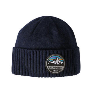 patagonia - 大特価‼️セール!新品タグ付!patagonia ブロデオビーニー ニット帽