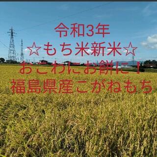 令和3年産 もち米 新米 900g 農家直送 福島県産こがねもち精米済み