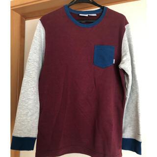 コロンビア(Columbia)の【Columbia】オークサバンナロングスリーブクルー PM4372 217(Tシャツ/カットソー(七分/長袖))
