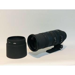 シグマ(SIGMA)のSIGMA APO 150-500 F5-6.3 DG OS HSM キヤノン(レンズ(ズーム))