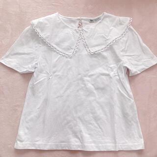 ZARA - ZARA スカラップ襟Tシャツ