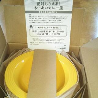 タチキチ(たち吉)のサントリー×ハウス食品 京都 たち吉謹製 あいあいカレー皿(2枚)(食器)