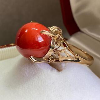 K18 12.6mm  大粒の血赤珊瑚 リング 指輪