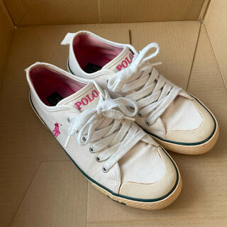 ポロラルフローレン(POLO RALPH LAUREN)のpolo Ralph Lauren  靴 シューズ 24cm(スニーカー)