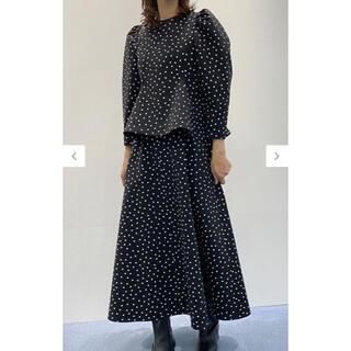 LUDLOW - セツコサジテールコラボスカート