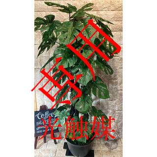 光触媒 人工観葉植物 ウォールグリーン 造花 アレンジ モンステラぺこ