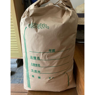 愛媛県産 令和3年収穫 もち米 5kg 玄米発送