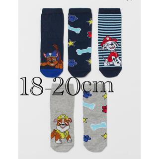エイチアンドエム(H&M)の《新作》新品 パウパトロール   ソックス 靴下 5足セット 18/20cm(靴下/タイツ)