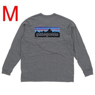 patagonia - Patagonia ロングTシャツ 38518 グレー M