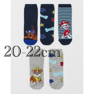 エイチアンドエム(H&M)の《新作》新品 パウパトロール ソックス 靴下 5足セット 20/22cm(靴下/タイツ)