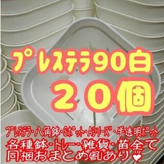 【スリット鉢】プレステラ90白20個 多肉植物 プラ鉢