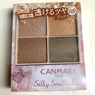 CANMAKE - シルキースフレアイズ09限定色
