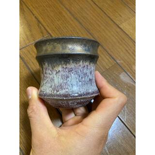 カタチ製作所 鉢 two tone ツートン ビーンズ コーデックス 多肉植物(その他)