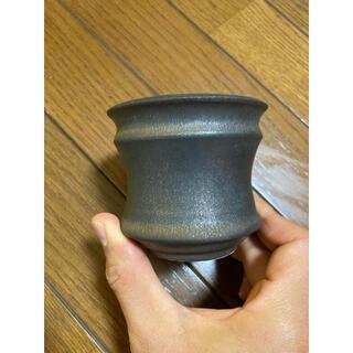 カタチ製作所 鉢 アンティークブラック ビーンズ コーデックス 多肉植物(その他)