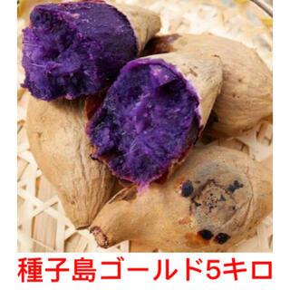 種子島ゴールド5キロ(鹿児島県産)即購入ok(野菜)