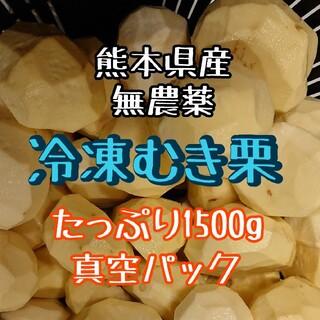 【2021年収穫】熊本県産 冷凍むき栗 1500g☆無農薬