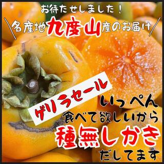 和歌山県産 九度山 種無し柿 箱込み4kg