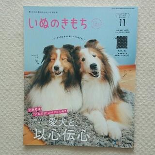 いぬのきもち 2021年11月号(専門誌)