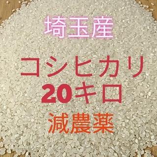 お米 コシヒカリ 20キロ 玄米  減農薬