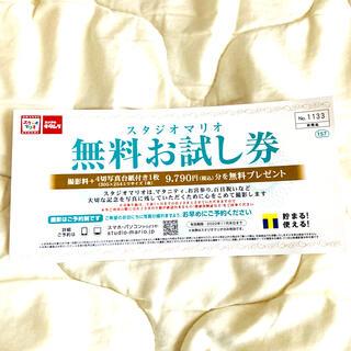 キタムラ(Kitamura)のスタジオマリオ 無料お試し券 非売品(その他)