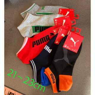 プーマ(PUMA)のプーマ 靴下 5点セット 21〜23cm(靴下/タイツ)