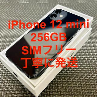 iPhone - iPhone12 mini 256GB 黒 SIMフリー