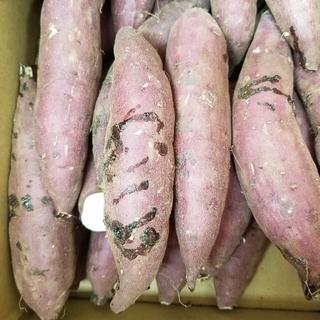 サツマイモ 紅はるかB級品 訳あり品箱入り7キロ細長 特大 3S.極S曲がり(野菜)
