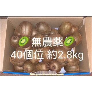 【無農薬・要追熟】グリーンキウイ キウイフルーツ 40個位 約2.8kg
