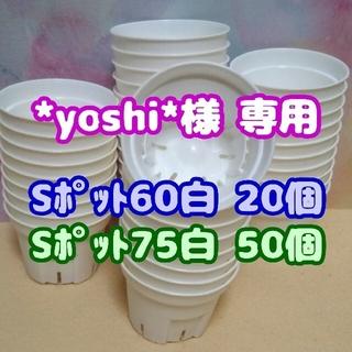 Sポット75 白 50個 2.5号 丸型 スリット鉢 プレステラ多肉植物プラ鉢(プランター)