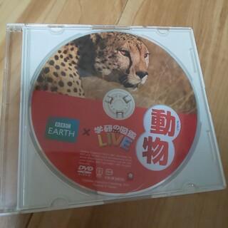 ガッケン(学研)の学研 図鑑 DVD  動物(その他)